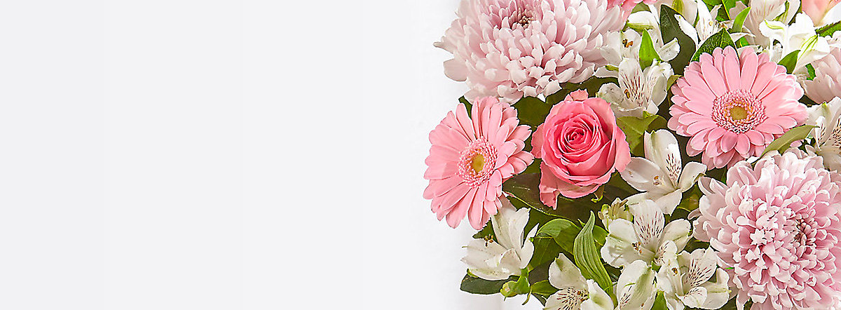 Shop flowers & gifts