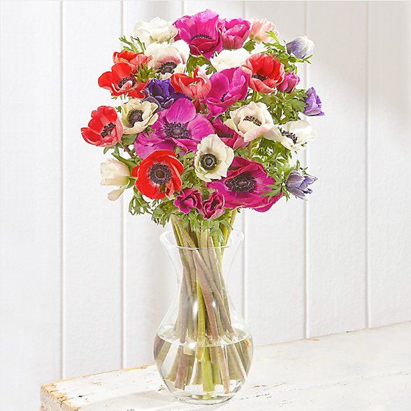 New anemone bouquet