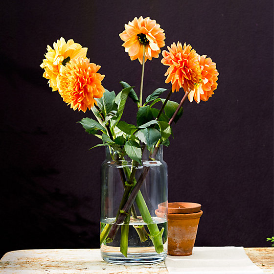 The Simple Glass Vase